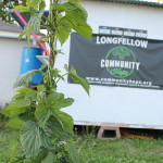 Community Hops Grows to New Heights