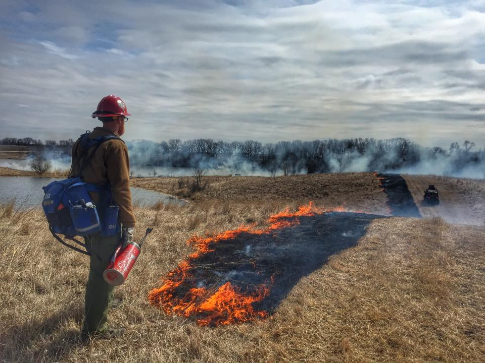 Conducting a controlled burn on the Froland Waterfowl Production Area :: Photo by Alex Galt, USFWS