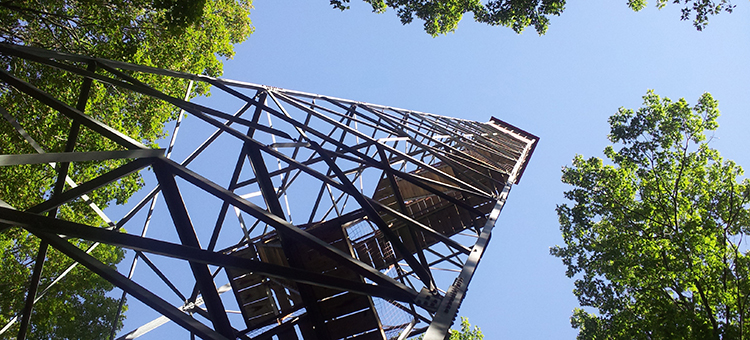 Fire Towers :: Photo via Minnesota DNR