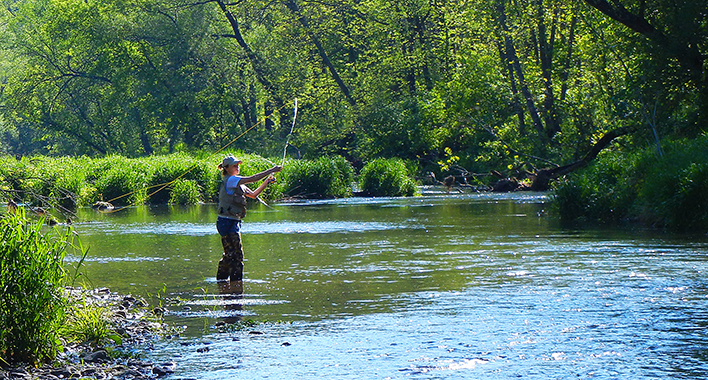 Minnesota's stunning streams lure trout anglers