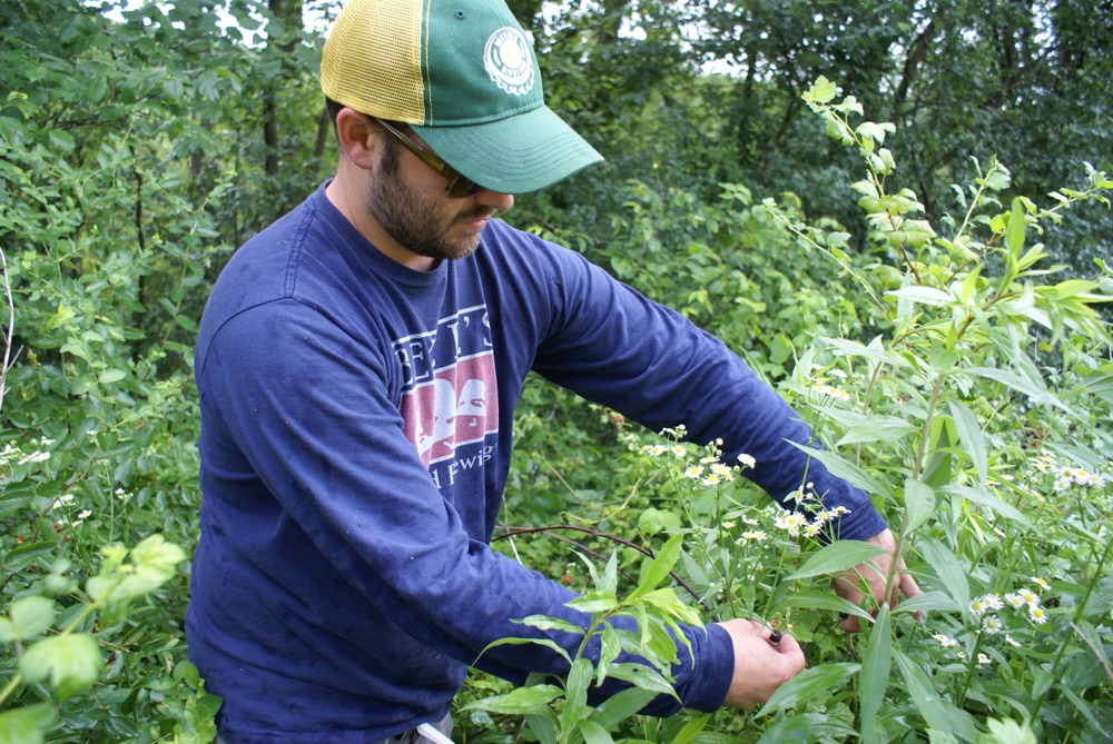 Foraging with Forager Brewing, Photo by Louis Garcia // Growler Magazine