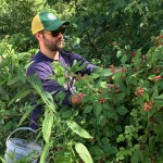 Foraging with Forager