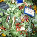 What can the average person do about food waste?