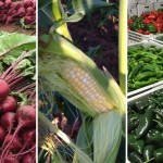 Community Supported Agriculture: What it is, how it works, and why it's worth considering
