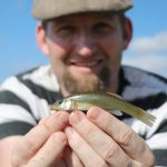 """Gotta catch 'em small: Growing """"micro-fishing"""" trend has Twin Cities roots"""