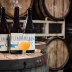 Insight Brewing releases first sour, buys-in on solar