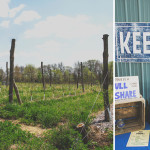 Rooted in Tradition, Keepsake Cidery Looks to the Future