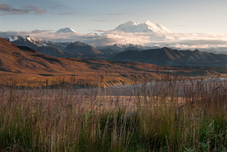 Denali, from Eielson // Photo by Tim Rains, NPS