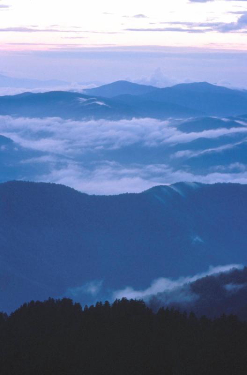 Early morning light produces a bluish hue on the mountains // Photo courtesy of NPS