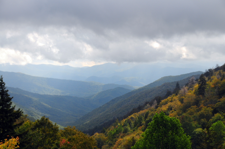 Fall Color from Luftee Overlook on Newfound Gap Road // Photo courtesy of NPS