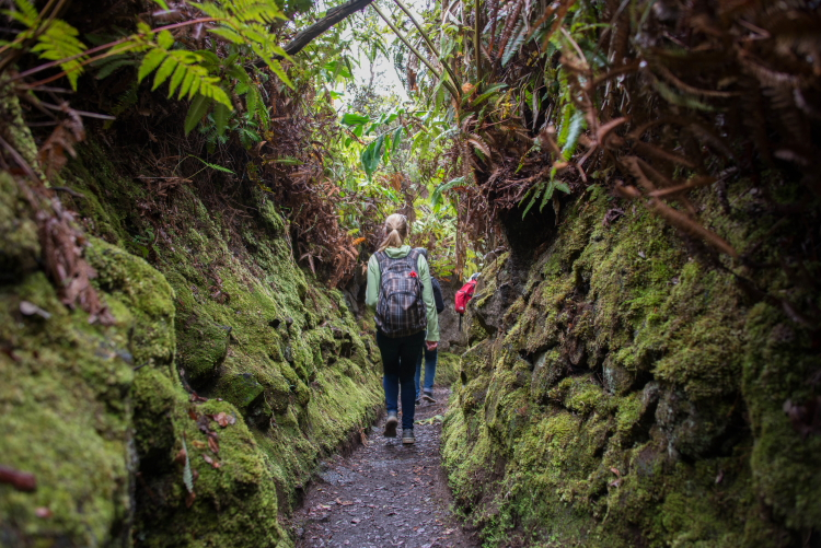 Walking between the moss covered rocks