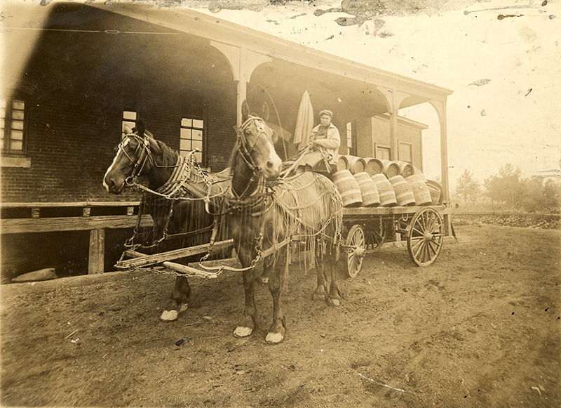 UMD Martin Library Archives SpColl_People's Brewery wagon_about 1908_mhs08688(1)
