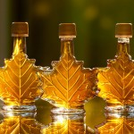 Maple syrup season has arrived