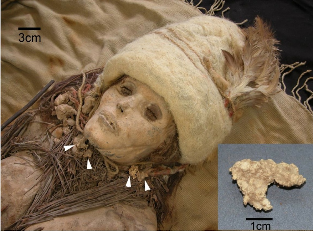 A mummy found with hunks of ancient cheese, shown in the inset. // Photo by Y.Liu and Y.Yang