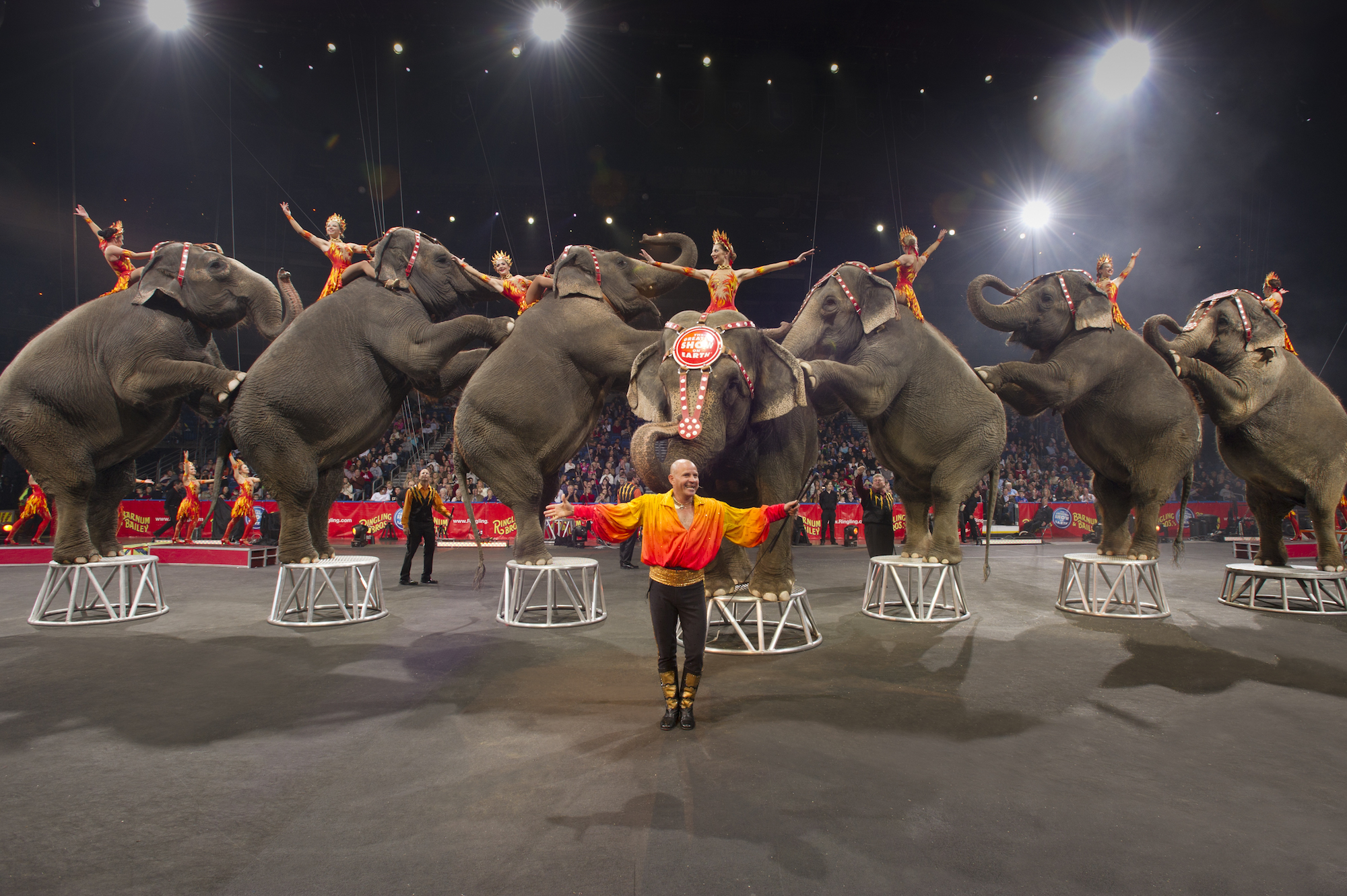 The Ringling Bros. and Barnum & Bailey Circus' parent company announced that elephant acts will end by May 2016 over growing public concern about the animals