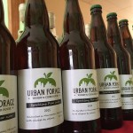 Urban Forage adds pear cider, bottle returns to the fold