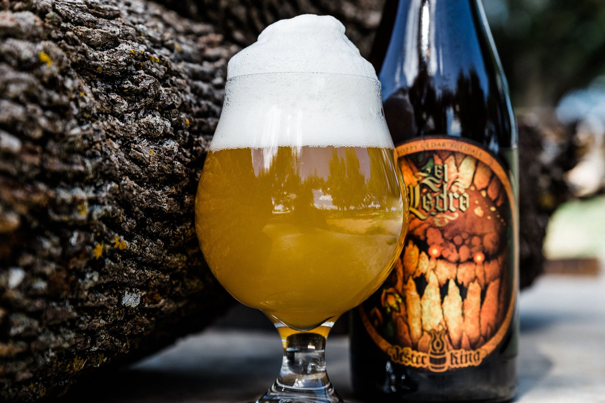 Jester King Brewery announced it is adopting the BA's independent craft brewer seal // Photo via Jester King's Facebook