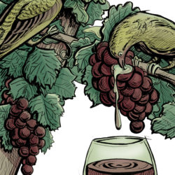 """Natural Whine: Gaining a fresh perspective on """"no-manipulation"""" vino"""