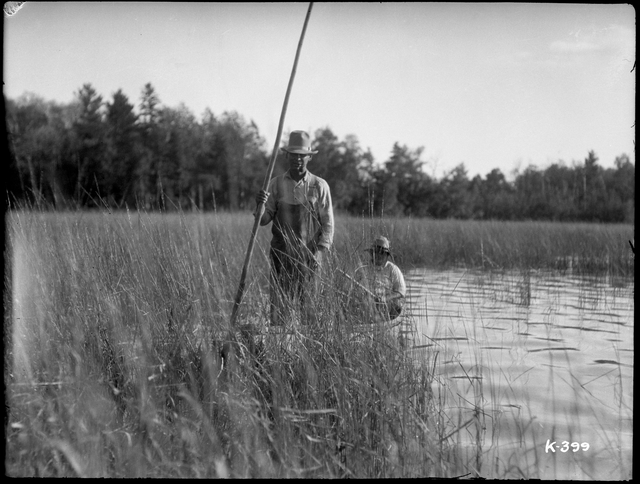 Ojibwe men gather wild rice on Flat Lake, White Earth Reservation, circa 1925 // Photo by Kenneth Melvin Wright, courtesy of Minnnesota Historical Society