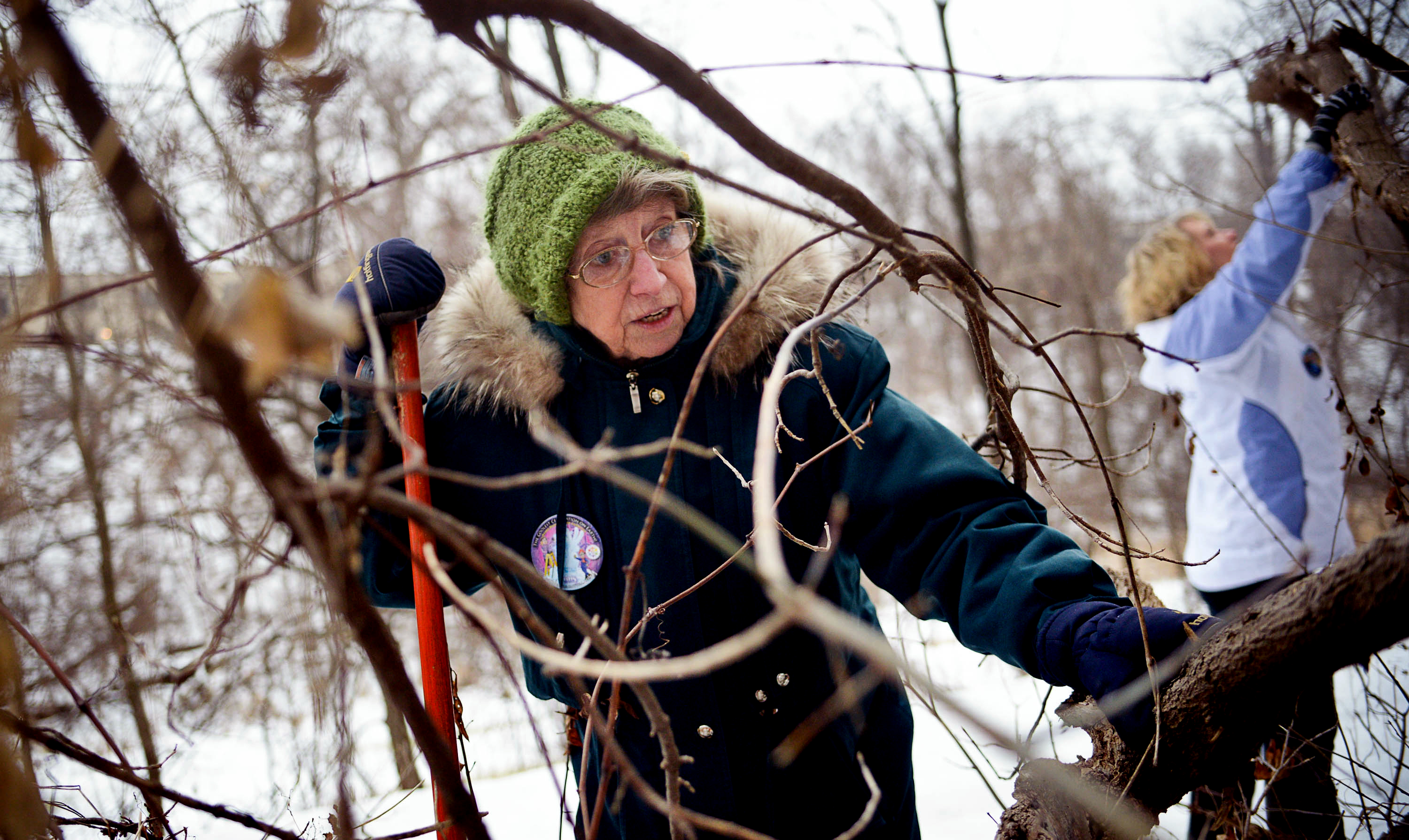 """Jay Kuehn, 82, of Oakdale searches for the medallion in the """"Fury presents the Pioneer Press Treasure Hunt"""" at Swede Hollow Park in St. Paul on Tuesday, Jan. 20, 2015. // Photo by Ben Garvin / Pioneer Press"""