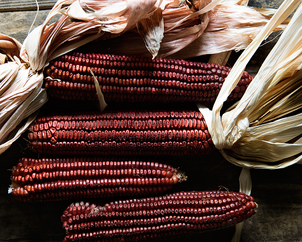 Jimmy Red Corn // Photo courtesy The Bitter Southerner blog