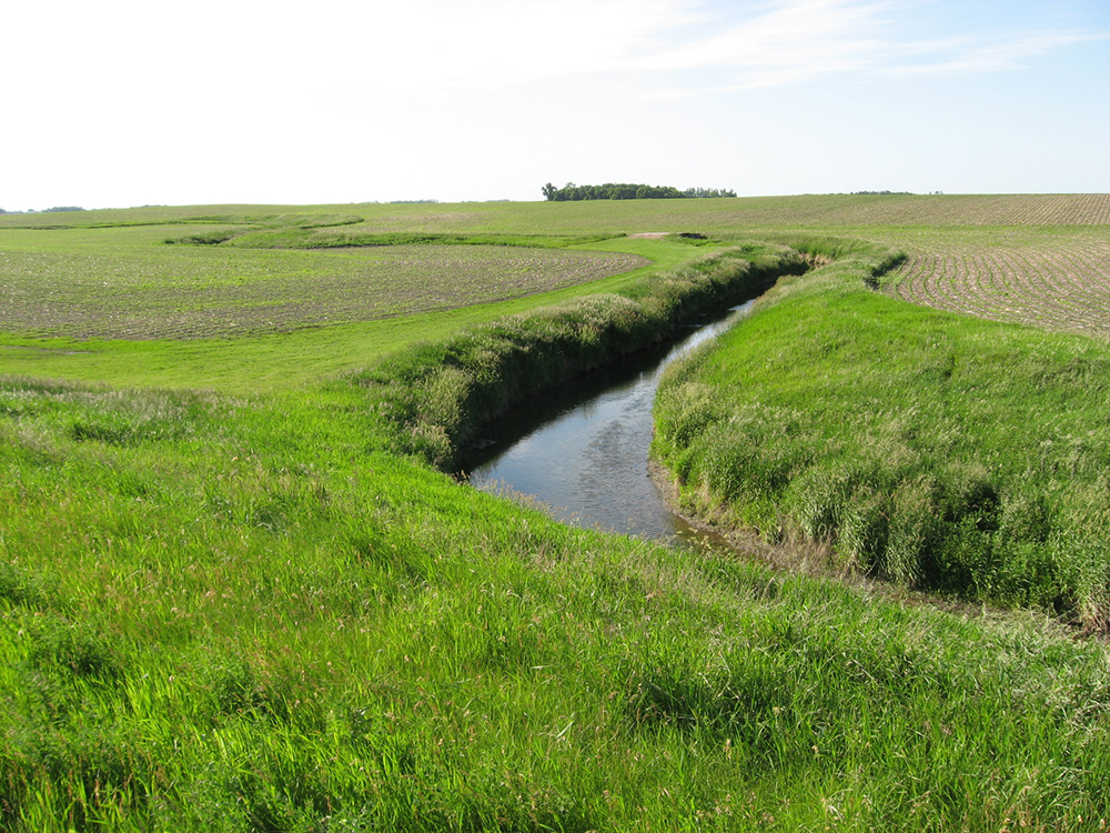 The convergence of crops, field and drainage creek // Photo courtesy Minnesota Pollution Control Agency