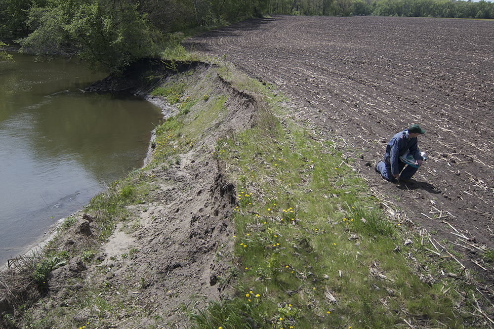 The edge of a crop field eroding into a nearby stream // Photo courtesy the Minnesota Pollution Control Agency
