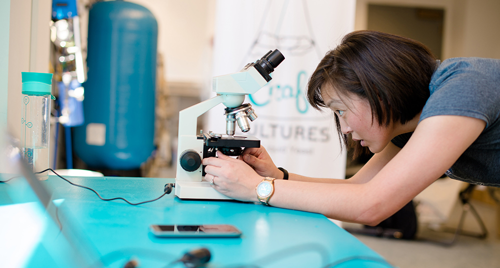 Dr. Emily Geiger is the founder of Craft Cultures, a commercial yeast company in Hancock, Michigan. Here, she focuses the microscope on a liquid yeast sample under 1000x magnification // Photo by Sarah Bird