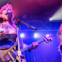 We Could Be (Feline) Heroes: Bowie fans and cat lovers come together for 14th annual fundraiser concert