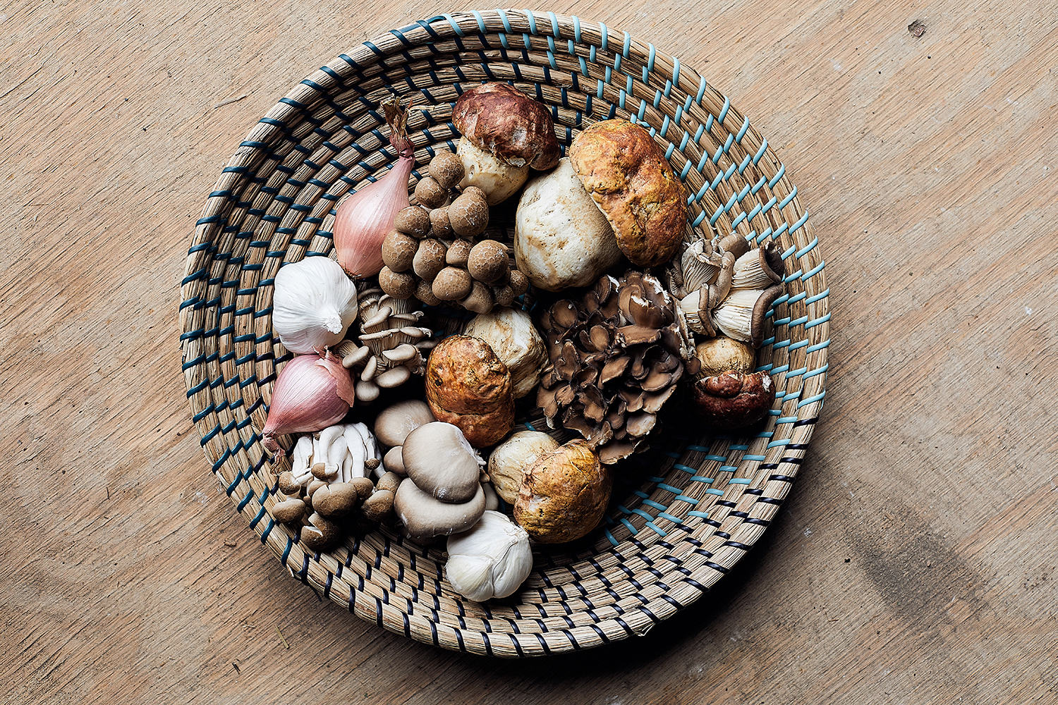 A variety of the mushrooms foraged for Lenny Russo and Daniel Cataldo's restaurant, ninetwentyfive // Photo by Wing Ta