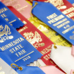 Best in Show: Four State Fair judges reveal what it takes to bring home a ribbon