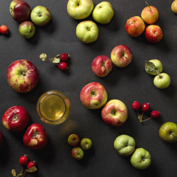 The Growler's Field Guide to Cider