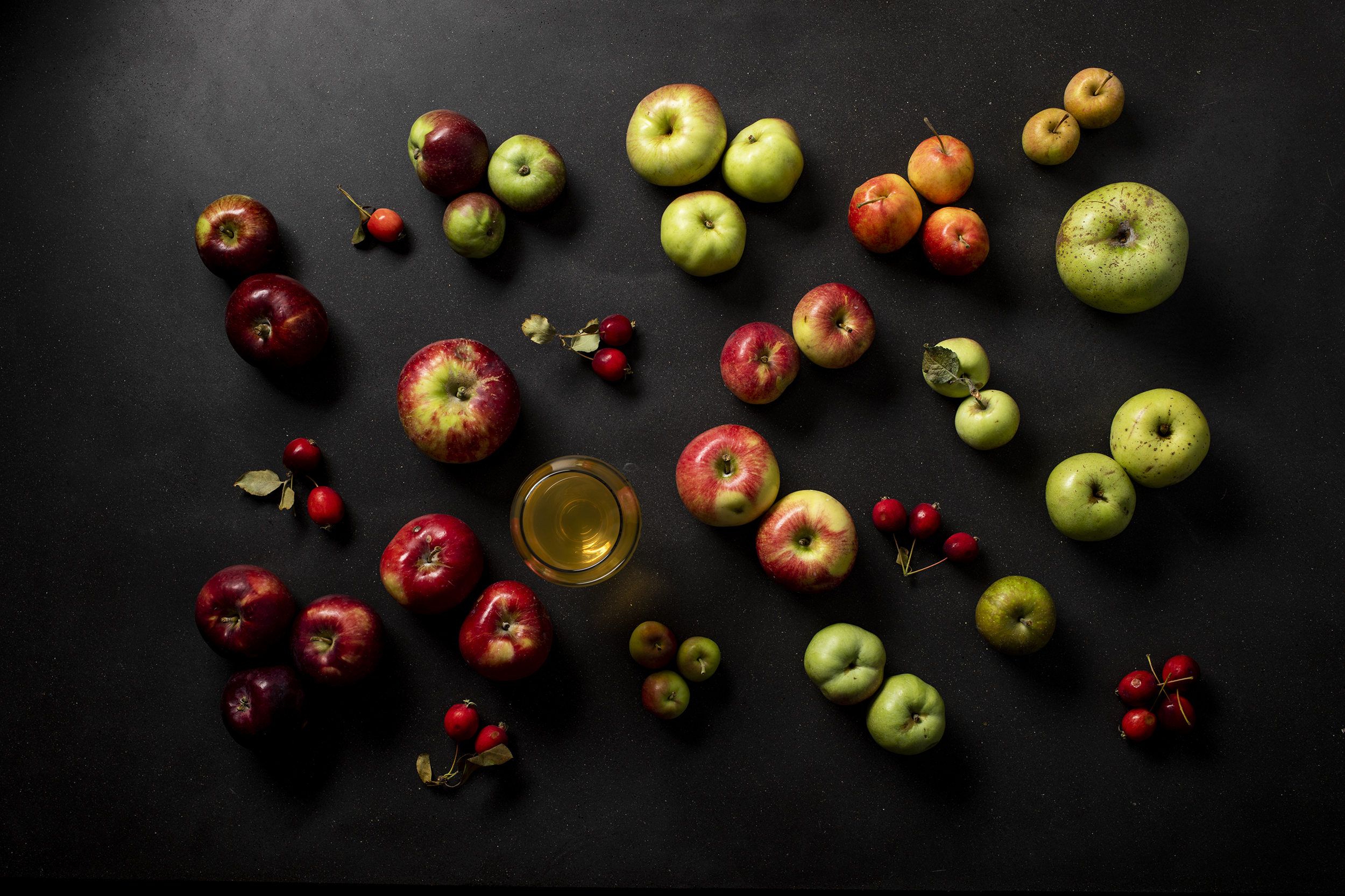 A variety of different cider apples // Photo by Tj Turner