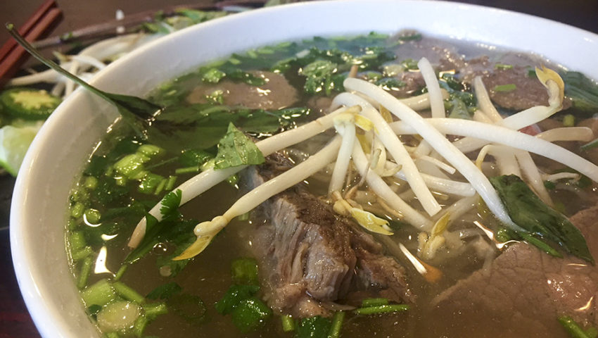 Bite of the Week: Beef Pho at Pho Lodge
