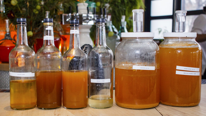 Change Agents: A series of fermentation projects at Colita is making old cocktails taste fresh and new