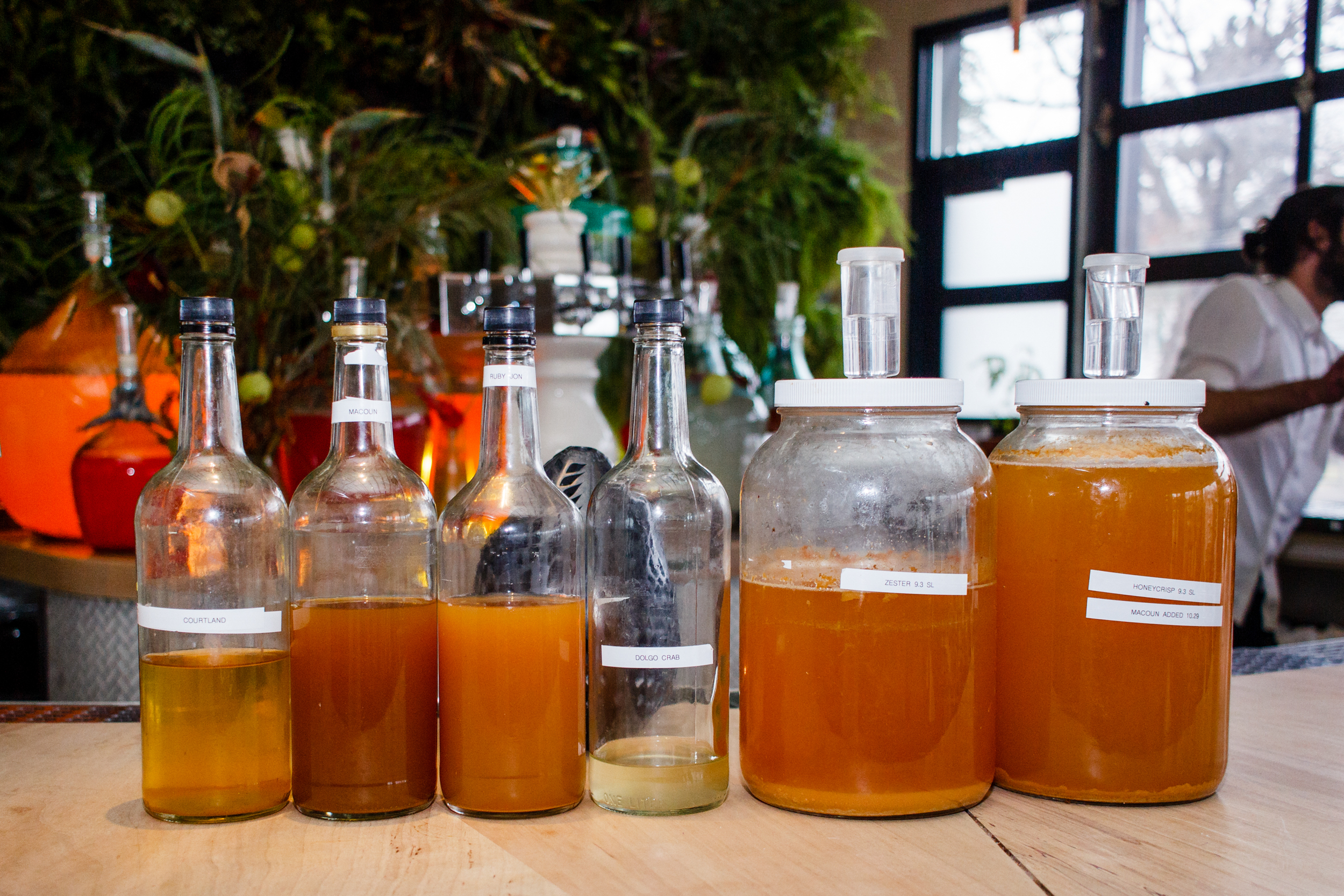 Several ferments used in the cocktail program at Colita // Photo by Nina Perkins