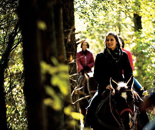 Adult Horse Rides