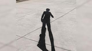 Stealing Shadows, Michelangelo