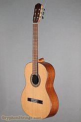 J. Navarro Guitar NC-41 NEW Image 8