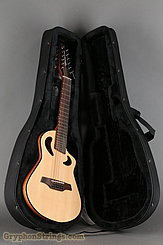 Veillette Guitar Avante Gryphon NEW Image 17