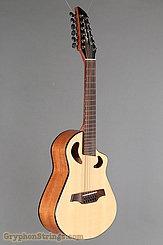 Veillette Guitar Avante Gryphon NEW Image 2