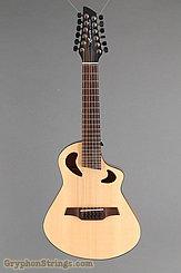 Veillette Guitar Avante Gryphon NEW Image 9