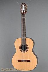 2015 Kremona Guitar Fiesta FC