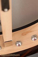 Bart Reiter Banjo Special NEW Image 19