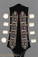 Collings MT, Black top, Ivoroid Binding, pickguard NEW  Image 14