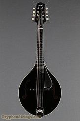 Collings Mandolin MT, Black top, Ivoroid Binding, pickguard NEW Image 9