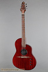 Rick Turner Guitar Renaissance RS-6 Deuce Model Lindsey Style NEW Image 1