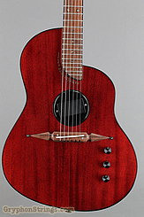 Rick Turner Guitar Renaissance RS-6 Deuce Model Lindsey Style NEW Image 10