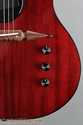 Rick Turner Guitar Renaissance RS-6 Deuce Model Lindsey Style NEW Image 14