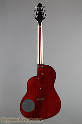Rick Turner Guitar Renaissance RS-6 Deuce Model Lindsey Style NEW Image 5